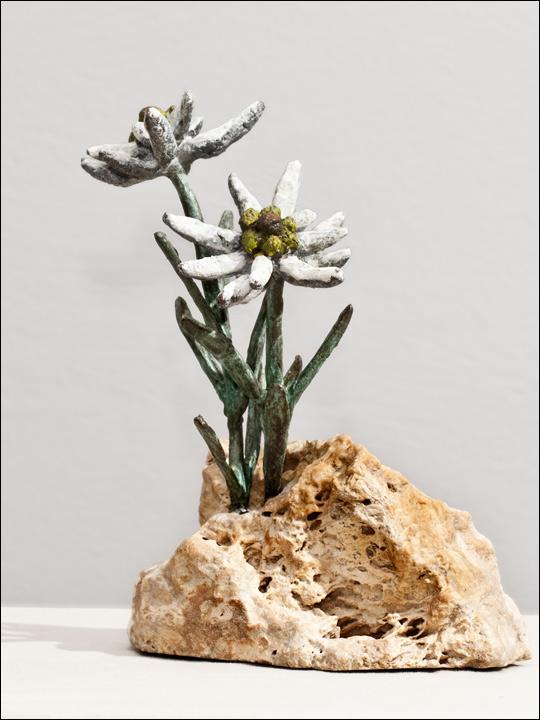Flores de bronce. Edleweiss.