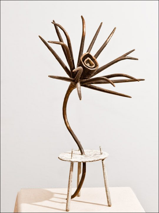 Esculturas de bronce. Flor crasa 4.