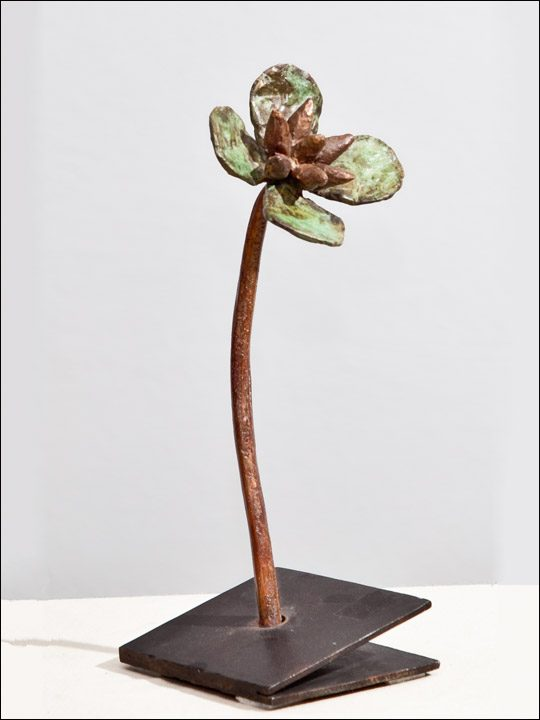 Flores de bronce. Flor crasa 5.