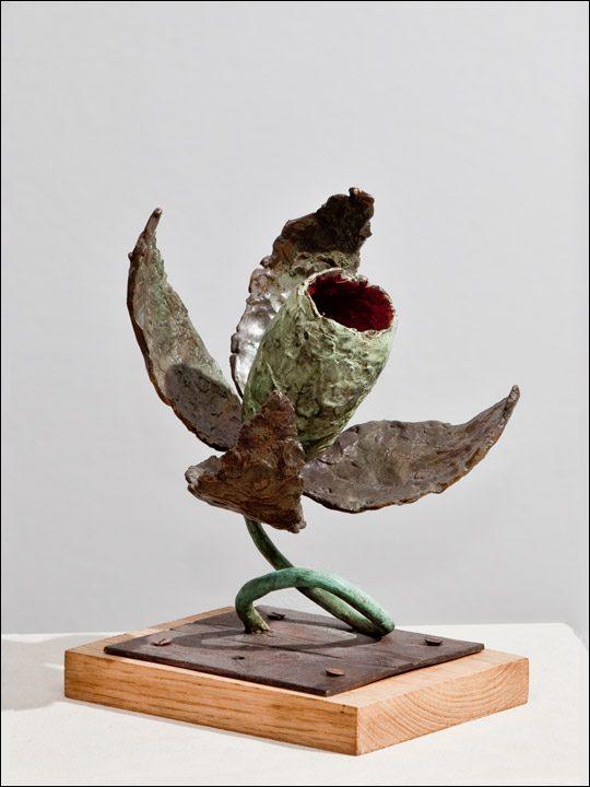 Figuras de bronce- Esculturas modernas - esculturas originales - Flor crasa 6.