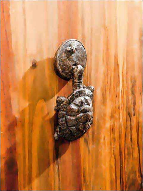 llamador puerta - aldaba tortuga 1