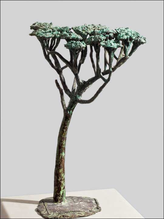 Figuras decorativas - Figura de arbol en bronce. Pino piñonero.