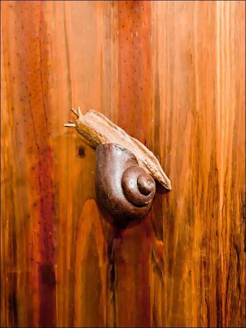 Pomos puertas - Pomo caracol 2