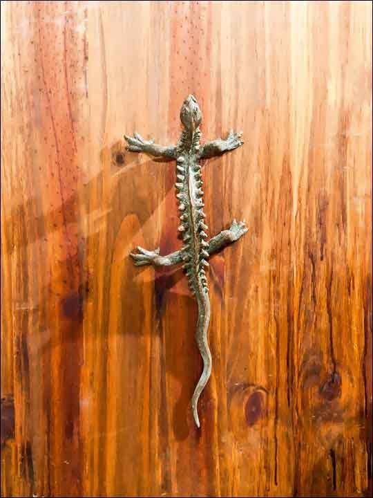 Tirador puerta exterior - Pomos puertas - Pomo dragón.