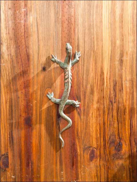 Tiradores bronce . Pomo lagarto -2