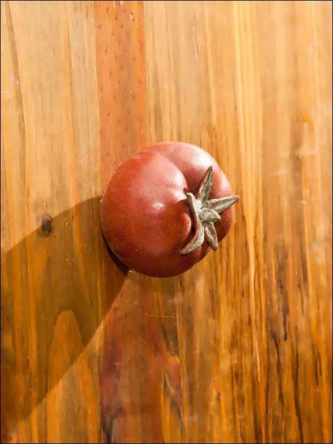 Pomos puertas. Pomo tomate.