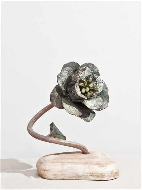 Flores de bronce. Rosa en piedra.