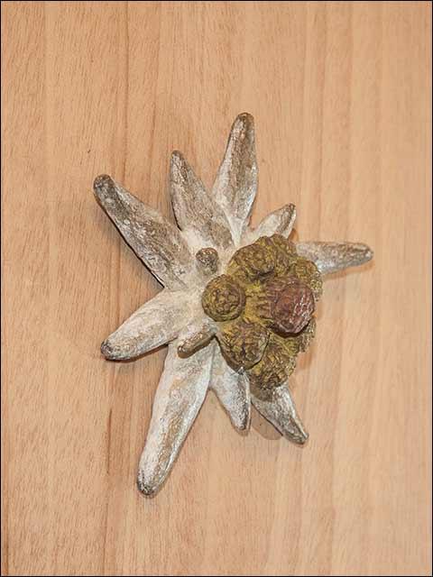 Tirador puerta bronce - Edelweiss